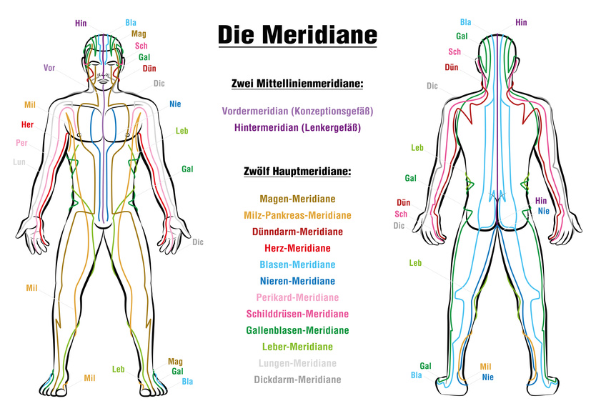 Meridian System Description Chart GERMANMeridian System Chart - GERMAN LABELING!- Male body with acupuncture meridians, anterior and posterior view.